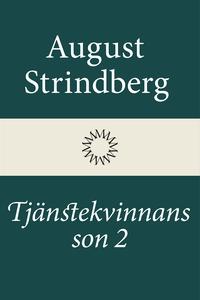 Tjänstekvinnans son 2 (e-bok) av August Strindb