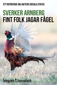 Fint folk jagar fågel - Ett reportage om jakten