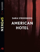 American Hotel: en e-singel ur Granta #4