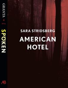 American Hotel: en e-singel ur Granta #4 (e-bok