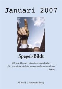Spegel-Bildt, januari 2007. CB som klippan i ok