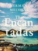 The Encantadas Or Enchanted Isles