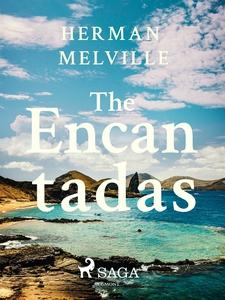 The Encantadas Or Enchanted Isles (e-bok) av He