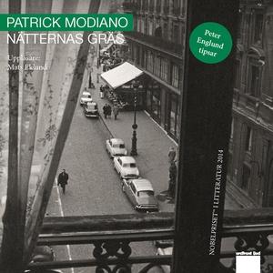 Nätternas gräs (ljudbok) av Patrick Modiano
