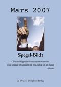 Spegel-Bildt, mars 2007. CB som klippan i okunskapens malström.