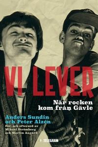 Vi lever - När rocken kom från Gävle (e-bok) av