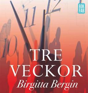 Tre veckor (ljudbok) av Birgitta Bergin