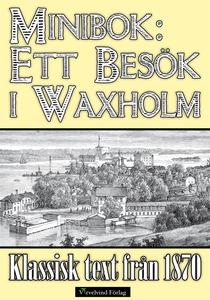 Ett besök i Vaxholm 1870 (e-bok) av Mikael Jäge