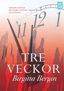 Tre veckor (e-bok) av Birgitta Bergin