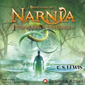 Min morbror trollkarlen : Narnia 1 (ljudbok) av