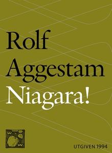 Niagara! : en berättelse (e-bok) av Rolf Aggest