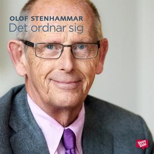 Det ordnar sig (ljudbok) av Olof Stenhammar