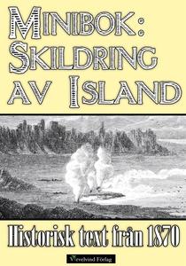 Minibok: Skildring av Island år 1870 (e-bok) av