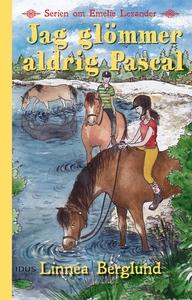 Jag glömmer aldrig Pascal (e-bok) av Linnéa Ber