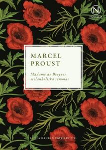Madame de Breyves melankoliska sommar (e-bok) a
