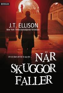 När skuggor faller (e-bok) av J.T. Ellison