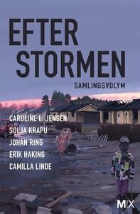 Efter stormen (utökad) (e-bok) av Johan Ring, C
