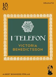 I telefon (e-bok) av Victoria Benedictsson, Ern