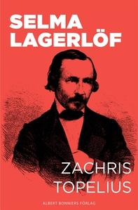 Zachris Topelius : Utveckling och mognad (e-bok