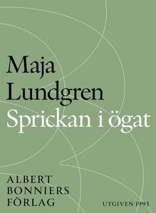Sprickan i ögat (e-bok) av Maja Lundgren