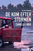 De kom efter stormen : Efter stormen