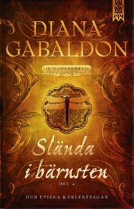 Slända i bärnsten - Del 4 (e-bok) av Diana Gaba