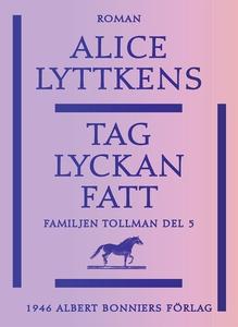 Tag lyckan fatt (e-bok) av Alice Lyttkens