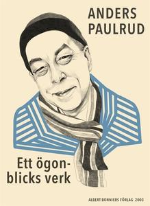 Ett ögonblicks verk (e-bok) av Anders Paulrud
