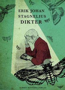 Dikter (e-bok) av Erik Johan, Erik Johan Stagne