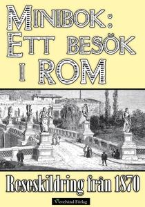 Minibok: Ett besök i Rom 1870 (e-bok) av Albert