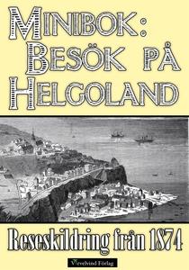 Minibok: Besök på Helgoland 1874 (e-bok) av Sar