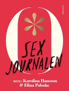 Sexjournalen (e-bok) av