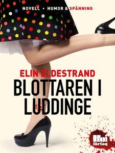 Blottaren i Luddinge (e-bok) av Elin Eldestrand
