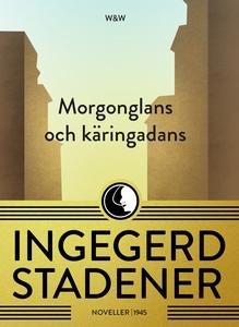 Morgonglans och käringadans : Noveller (e-bok)