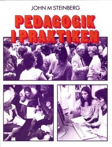 Pedagogik i praktiken (e-bok) av John Steinberg