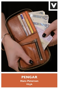 Pengar (e-bok) av Hans Peterson