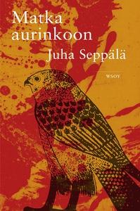 Matka aurinkoon (e-bok) av Juha Seppälä