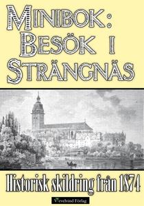 Minibok: Ett besök i Strängnäs 1874 (e-bok) av