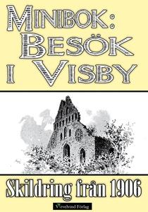 Minibok: Ett besök i Visby 1906 (e-bok) av John