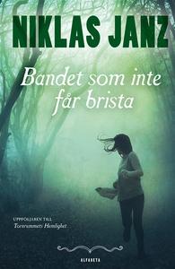 Bandet som inte får brista (e-bok) av Niklas Ja