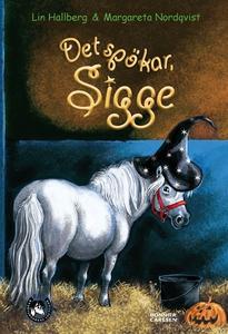 Det spökar, Sigge (e-bok) av Lin Hallberg