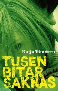 Tusen bitar saknas (e-bok) av Katja Timgren