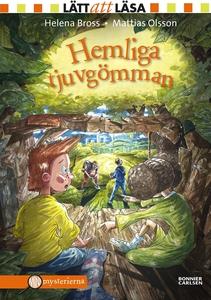 Hemliga tjuvgömman (e-bok) av Helena Bross