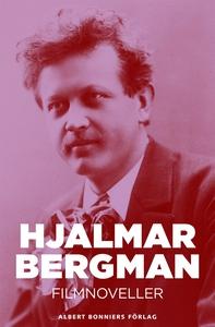 Filmnoveller (e-bok) av Hjalmar  Bergman