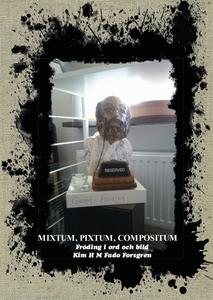 Mixtum, pixtum, compositum (e-bok) av Kim H M F