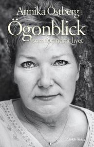 Ögonblick som förändrar livet (e-bok) av Annika