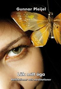 Läk mitt öga (e-bok) av Gunnar Pleijel