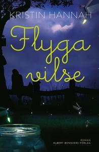 Flyga vilse (e-bok) av Kristin Hannah