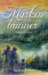Marken Brinner (e-bok) av