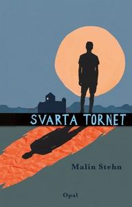 Svarta tornet (e-bok) av Malin Stehn